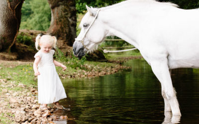 Location Equine Portrait Lifestyle photo shoot in Hampshire