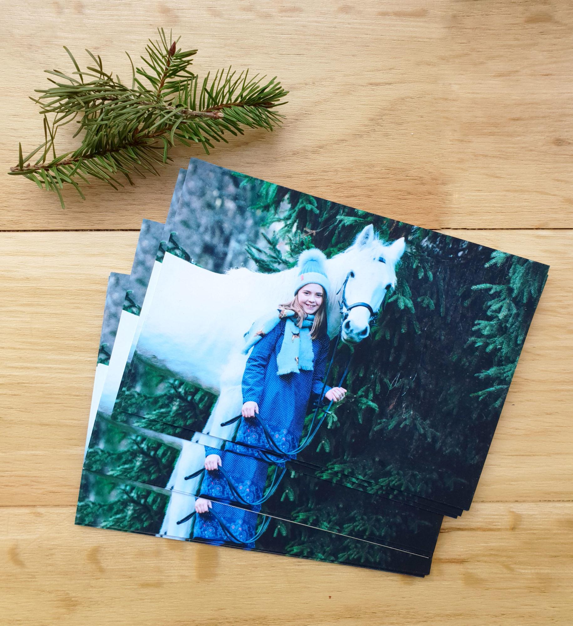 Jo Worthington Photography Christmas Equine photoshoots