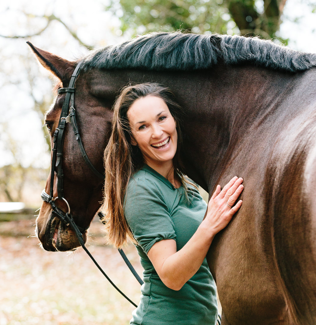 Dutch Warmblood equine photographer #equinephotographer