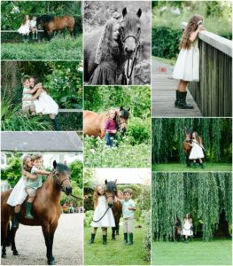 Fordingbridge Hampshire horse photographer