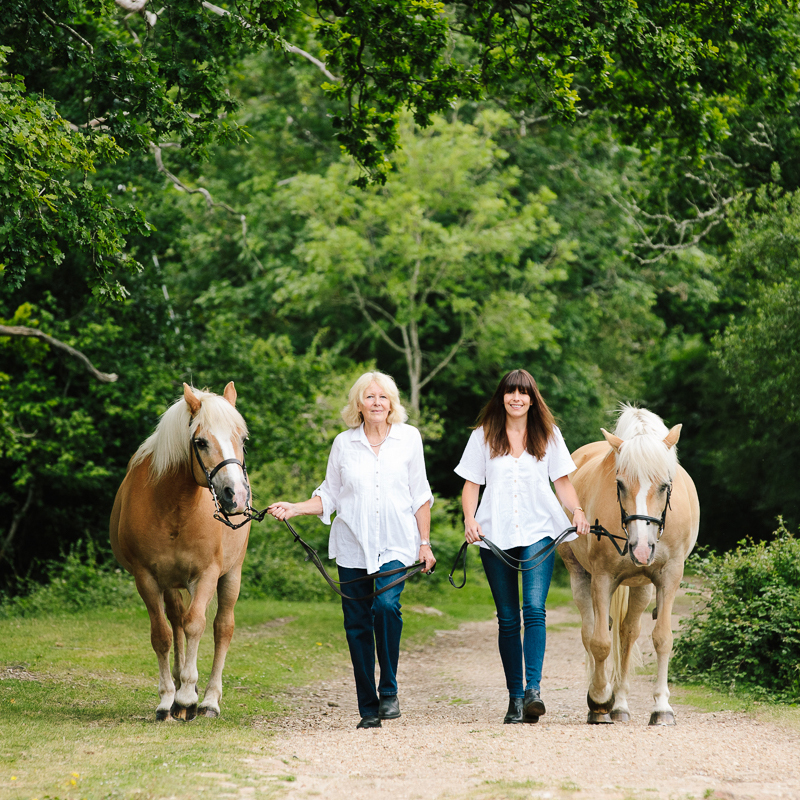 Equestrian horse photographer